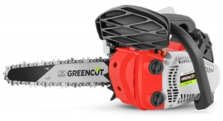Greencut GS2500 10 CARVIN